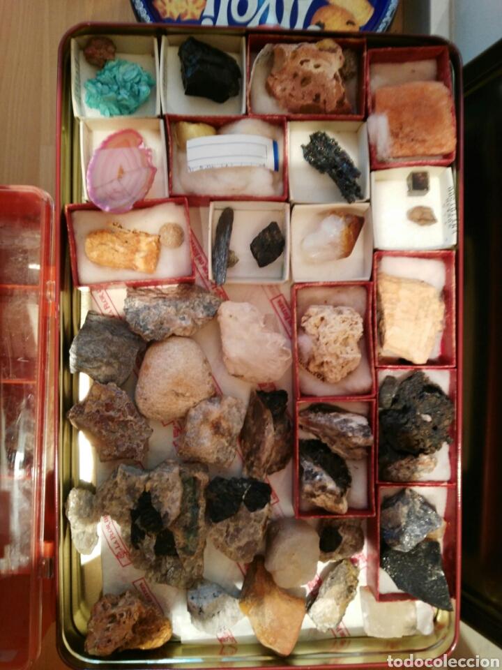 Coleccionismo de minerales: 9 CAJAS DE MINERALES, COLECCION - Foto 8 - 136591926