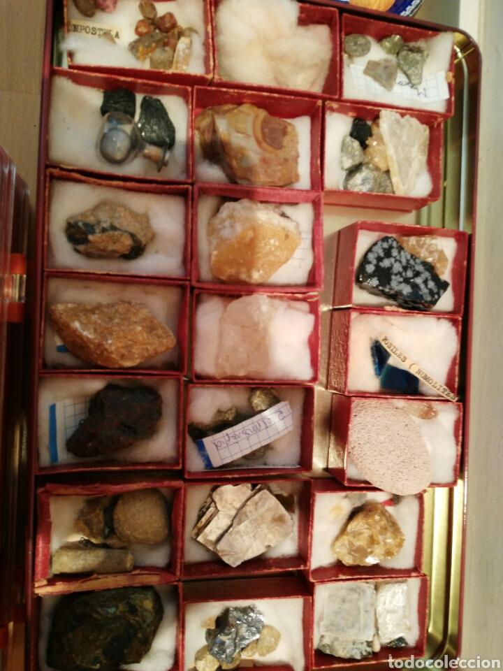 Coleccionismo de minerales: 9 CAJAS DE MINERALES, COLECCION - Foto 9 - 136591926