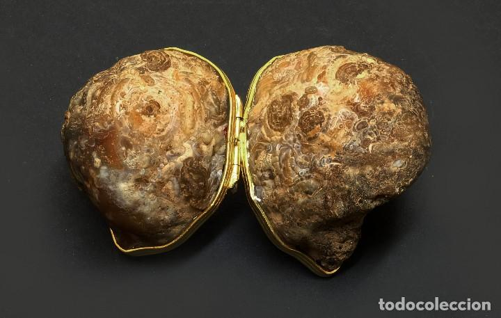 Coleccionismo de minerales: Caja Geoda de amatista - Bellísima Geoda convertida en caja - El Arte en la Historia Natural - Foto 3 - 139088722