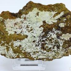 Coleccionismo de minerales: FLUORAPATITO+CALCIOFERRITA - MINERAL. Lote 140965756