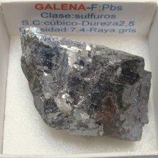 Coleccionismo de minerales: GALENA. Lote 142600254