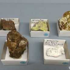 Coleccionismo de minerales: MINERAL-ARAGONITO, MOÑIBDENITA, HESSONITA,WAVELLITA, FLUORAPATITA. Lote 151642217