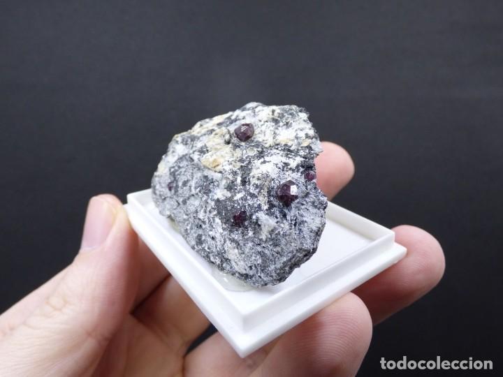 Coleccionismo de minerales: FD MINERALES: GRANATES ALMANDINOS - NIJAR - ALMERÍA - ANDALUCÍA - ESPAÑA - L+189 - Foto 5 - 153115846