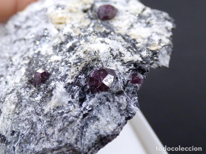 Coleccionismo de minerales: FD MINERALES: GRANATES ALMANDINOS - NIJAR - ALMERÍA - ANDALUCÍA - ESPAÑA - L+189 - Foto 12 - 153115846