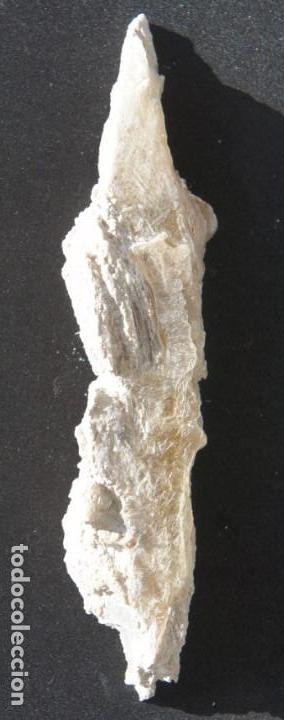 """Coleccionismo de minerales: Yeso """"Punta de Flecha"""" - Foto 2 - 154734314"""