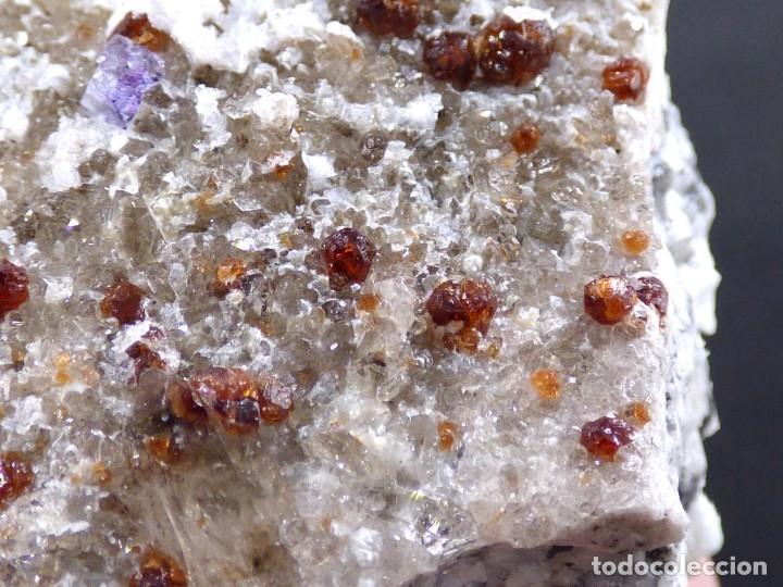 Coleccionismo de minerales: FD MINERALES: GRANATES ESPESARTINA SOBRE ORTOSA CON CUARZO, FLUORITA Y CALCEDONIA - CHINA - MLQ 141 - Foto 7 - 160275262