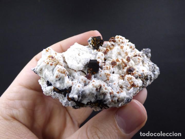 Coleccionismo de minerales: FD MINERALES: GRANATES ESPESARTINA SOBRE ORTOSA CON FLUORITA Y CALCEDONIA - CHINA - MLQ 142 - Foto 5 - 160276270