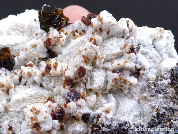 Coleccionismo de minerales: FD MINERALES: GRANATES ESPESARTINA SOBRE ORTOSA CON FLUORITA Y CALCEDONIA - CHINA - MLQ 142 - Foto 7 - 160276270