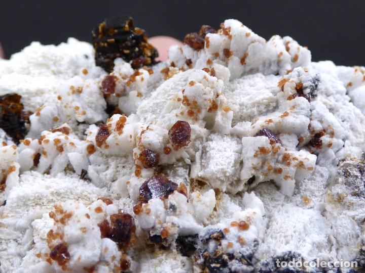 Coleccionismo de minerales: FD MINERALES: GRANATES ESPESARTINA SOBRE ORTOSA CON FLUORITA Y CALCEDONIA - CHINA - MLQ 142 - Foto 8 - 160276270
