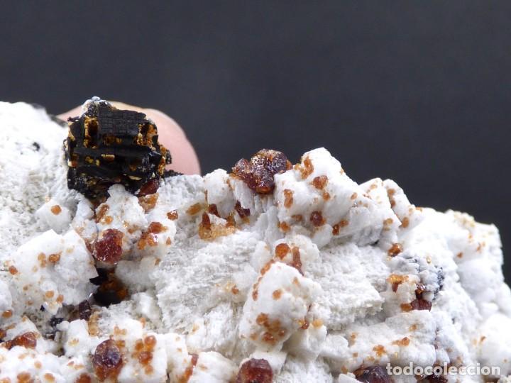 Coleccionismo de minerales: FD MINERALES: GRANATES ESPESARTINA SOBRE ORTOSA CON FLUORITA Y CALCEDONIA - CHINA - MLQ 142 - Foto 12 - 160276270