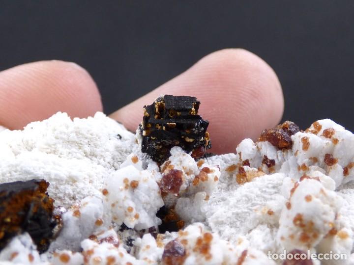 Coleccionismo de minerales: FD MINERALES: GRANATES ESPESARTINA SOBRE ORTOSA CON FLUORITA Y CALCEDONIA - CHINA - MLQ 142 - Foto 14 - 160276270