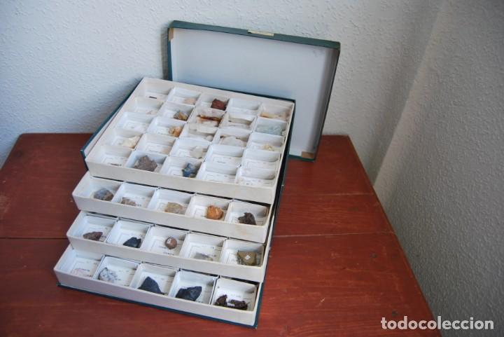 COLECCIÓN DE 100 MINERALES - CAJA DE CARTÓN CON CUATRO BANDEJAS - ESCUELA - FACULTAD - AÑOS 50-60 (Coleccionismo - Mineralogía - Otros)