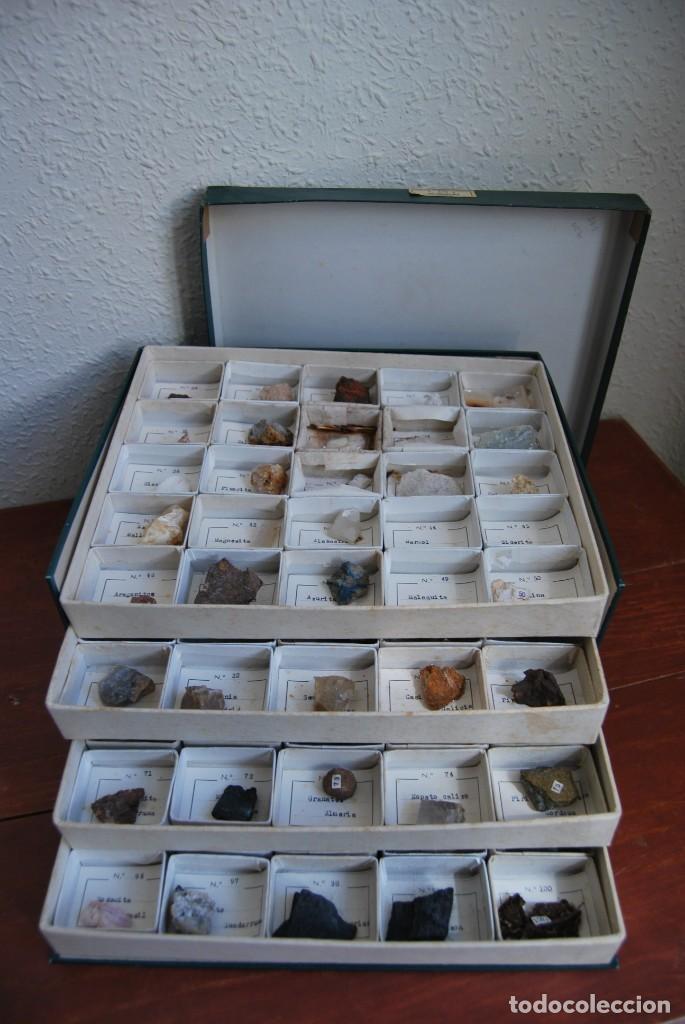 Coleccionismo de minerales: COLECCIÓN DE 100 MINERALES - CAJA DE CARTÓN CON CUATRO BANDEJAS - ESCUELA - FACULTAD - AÑOS 50-60 - Foto 7 - 160797058