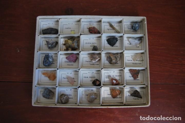 Coleccionismo de minerales: COLECCIÓN DE 100 MINERALES - CAJA DE CARTÓN CON CUATRO BANDEJAS - ESCUELA - FACULTAD - AÑOS 50-60 - Foto 8 - 160797058
