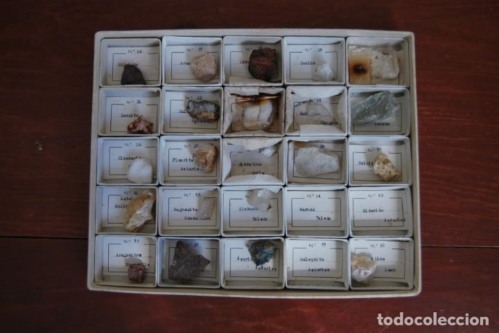 Coleccionismo de minerales: COLECCIÓN DE 100 MINERALES - CAJA DE CARTÓN CON CUATRO BANDEJAS - ESCUELA - FACULTAD - AÑOS 50-60 - Foto 9 - 160797058