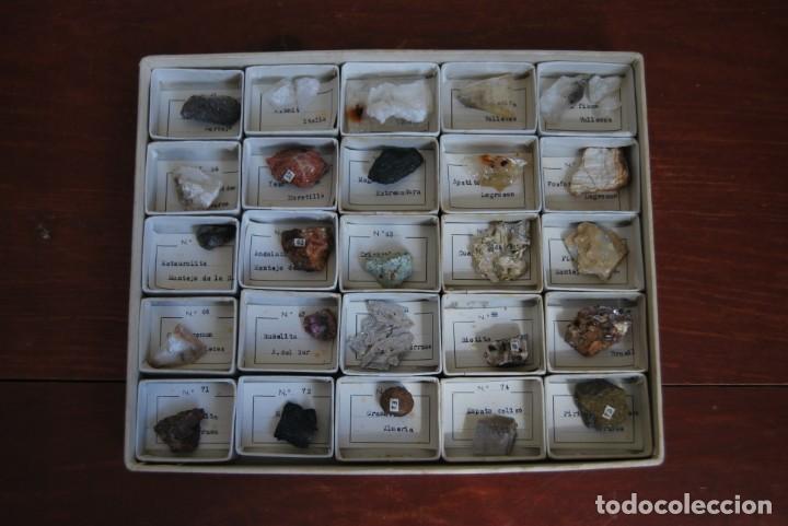 Coleccionismo de minerales: COLECCIÓN DE 100 MINERALES - CAJA DE CARTÓN CON CUATRO BANDEJAS - ESCUELA - FACULTAD - AÑOS 50-60 - Foto 10 - 160797058