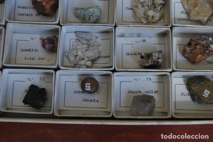 Coleccionismo de minerales: COLECCIÓN DE 100 MINERALES - CAJA DE CARTÓN CON CUATRO BANDEJAS - ESCUELA - FACULTAD - AÑOS 50-60 - Foto 11 - 160797058