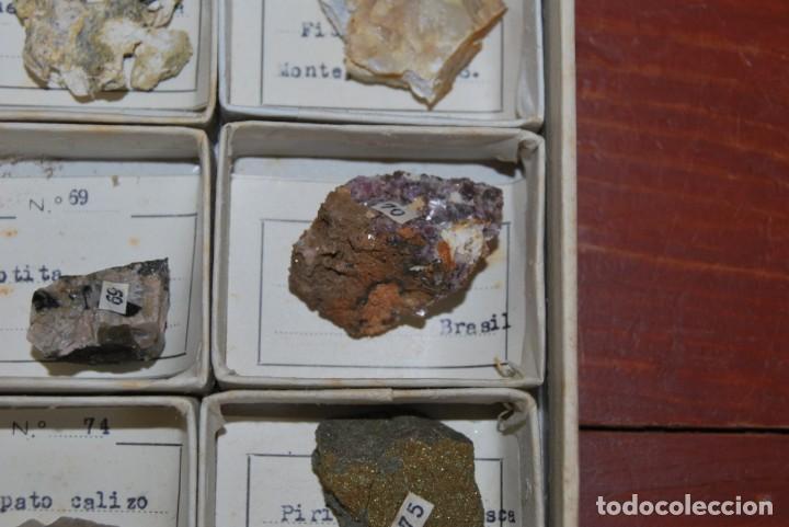 Coleccionismo de minerales: COLECCIÓN DE 100 MINERALES - CAJA DE CARTÓN CON CUATRO BANDEJAS - ESCUELA - FACULTAD - AÑOS 50-60 - Foto 12 - 160797058