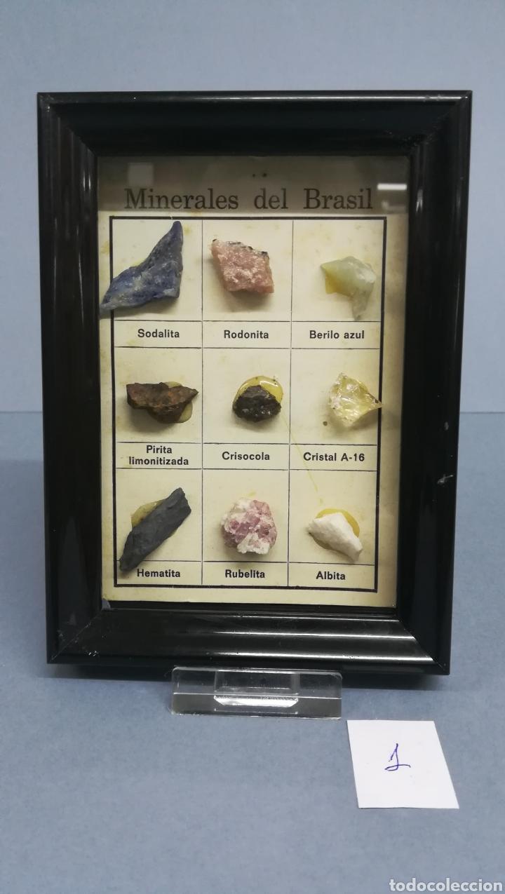 MINERAL (Coleccionismo - Mineralogía - Otros)