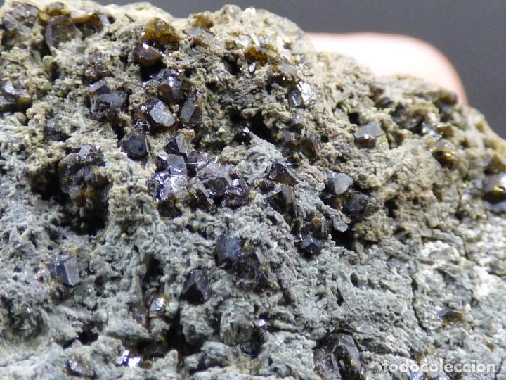 Coleccionismo de minerales: FD MINERALES: GRANATES GROSULARIA - PUERTO DEL CARRETERO - GRANADA - ESPAÑA - MLQ 186 - Foto 14 - 170126748