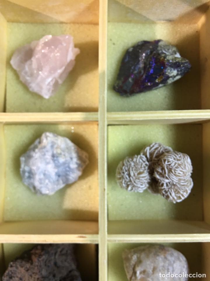 Coleccionismo de minerales: CAJA DE MINERALES DEL MUNDO - 24 MINERALES EN SU CAJA DE MADERA - Foto 3 - 184260603