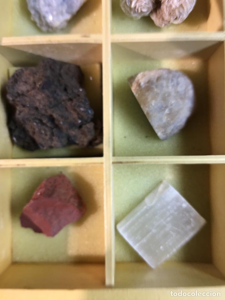 Coleccionismo de minerales: CAJA DE MINERALES DEL MUNDO - 24 MINERALES EN SU CAJA DE MADERA - Foto 4 - 184260603