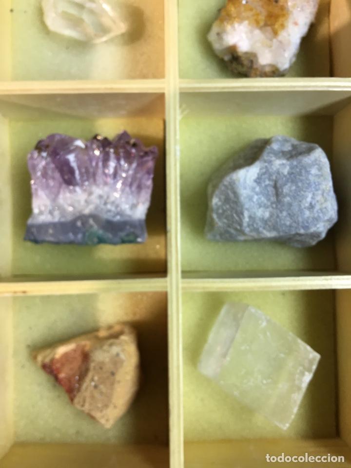 Coleccionismo de minerales: CAJA DE MINERALES DEL MUNDO - 24 MINERALES EN SU CAJA DE MADERA - Foto 5 - 184260603