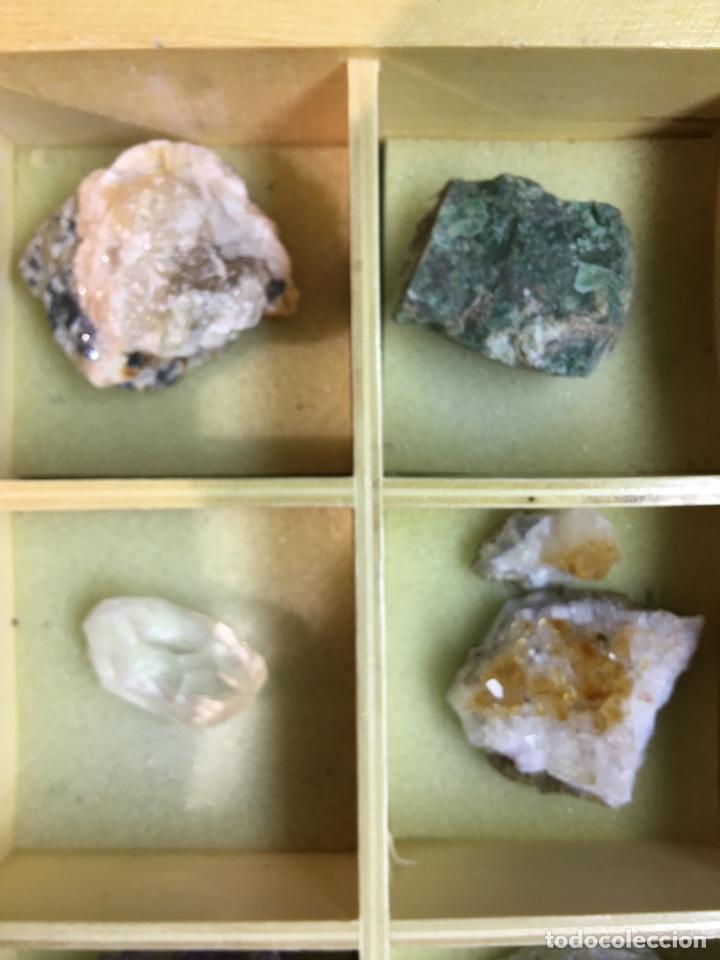 Coleccionismo de minerales: CAJA DE MINERALES DEL MUNDO - 24 MINERALES EN SU CAJA DE MADERA - Foto 6 - 184260603