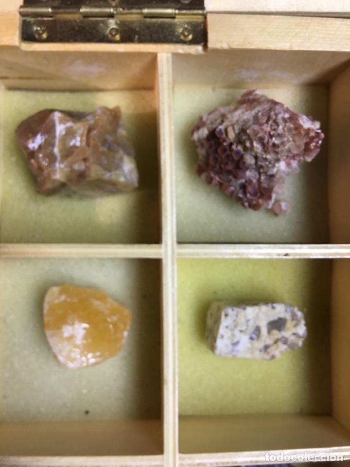 Coleccionismo de minerales: CAJA DE MINERALES DEL MUNDO - 24 MINERALES EN SU CAJA DE MADERA - Foto 7 - 184260603