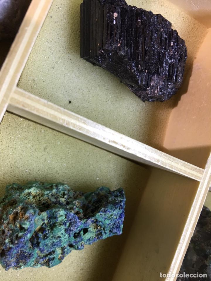 Coleccionismo de minerales: CAJA DE MINERALES DEL MUNDO - 24 MINERALES EN SU CAJA DE MADERA - Foto 11 - 184260603