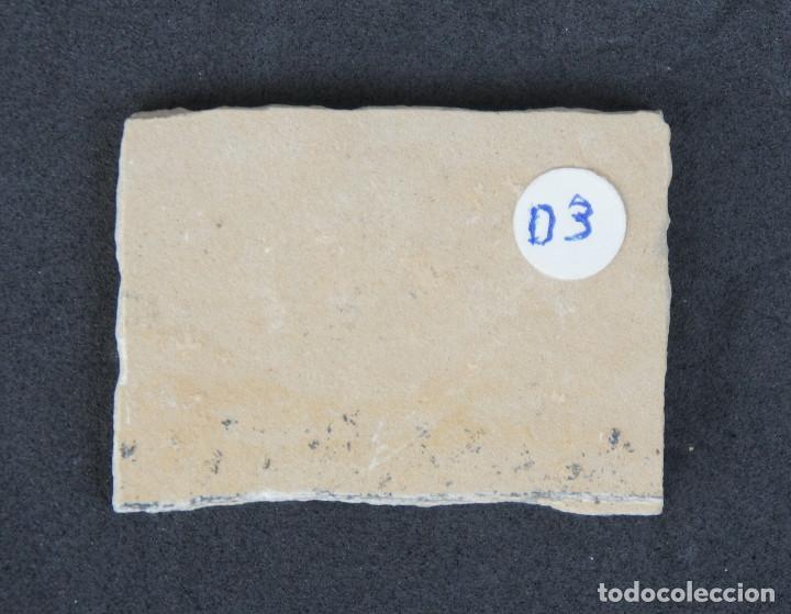 Coleccionismo de minerales: Dendritas de pirolusita sobre caliza tableada - Foto 5 - 191943888