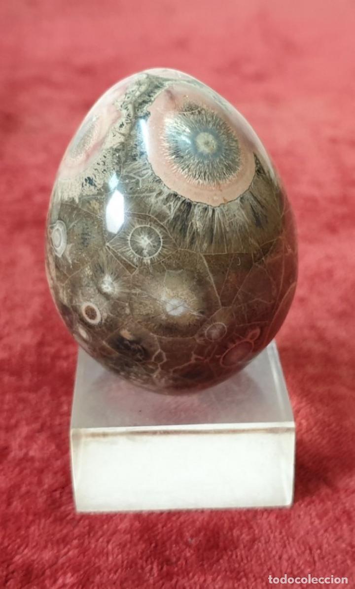 Coleccionismo de minerales: COLECCIÓN DE MINERALES. VARIOS TAMAÑOS Y FORMAS. SIGLO XX. - Foto 4 - 198285046