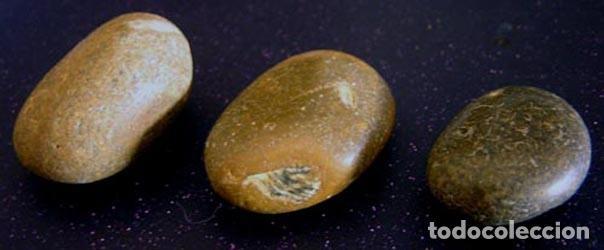 NÓDULOS SÍLEX / IBIZA (Coleccionismo - Mineralogía - Otros)