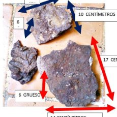Coleccionismo de minerales: LAVA VOLCÁNICA DE ALMERIA. POSIBLEMENTE DEL MIOCENO. . Lote 202010428