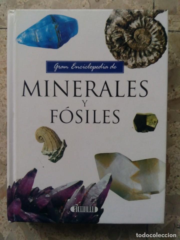 GRAN ENCICLOPEDIA DE MINERALES Y FÓSILES - SERVILIBRO, 1990 (Coleccionismo - Mineralogía - Otros)