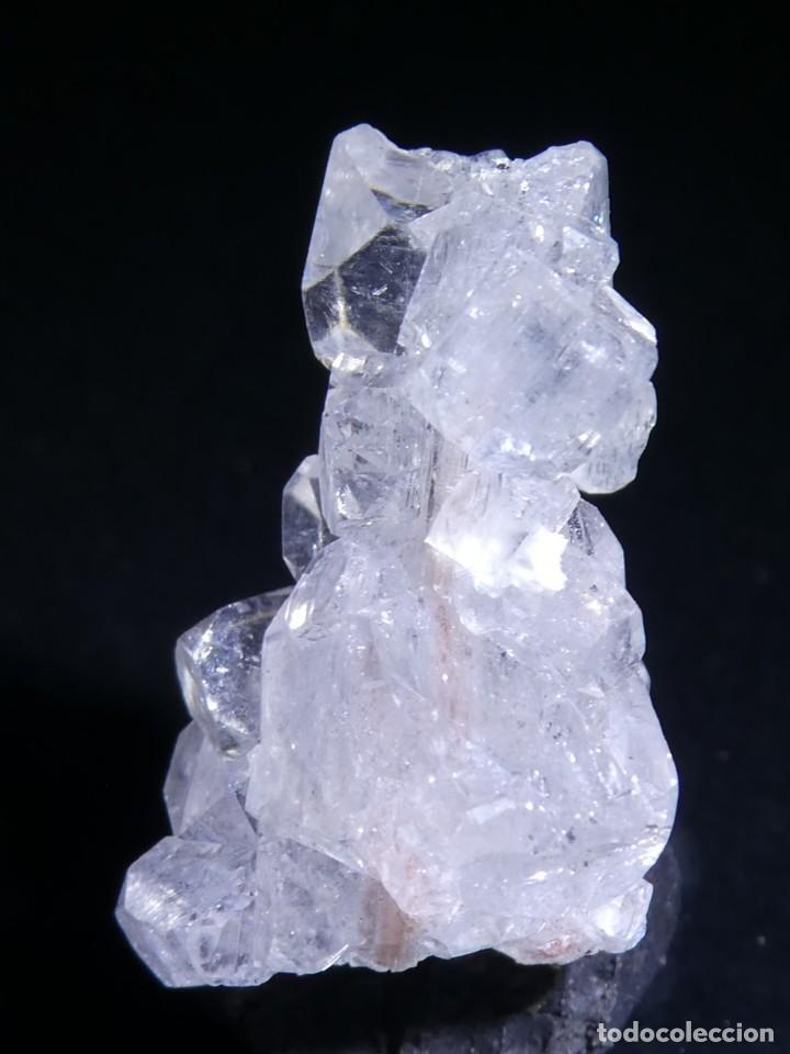 Coleccionismo de minerales: (013) MINERALES. APOFILITA. POONA, INDIA - Foto 2 - 207118193