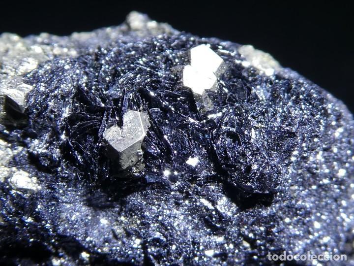 Coleccionismo de minerales: (059) MINERALES. PIRITA SOBRE HEMATITES, ELBA, ITALIA. - Foto 2 - 207118540
