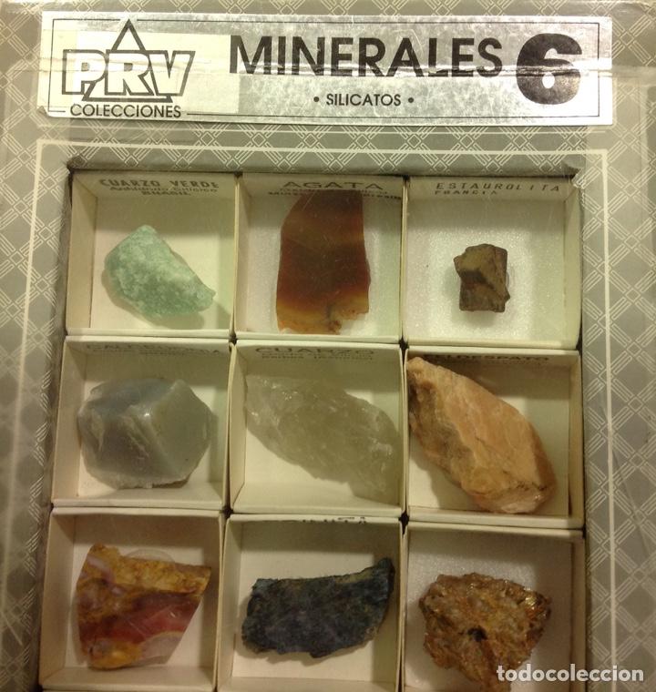 Coleccionismo de minerales: Conjunto de minerales, silicatos, 12 elementos. Colección escolar para ciencias naturales. - Foto 2 - 227096470