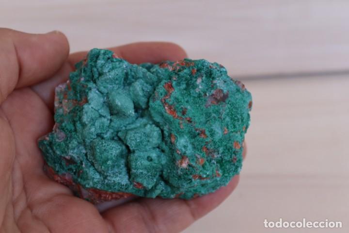 Coleccionismo de minerales: MINERALES MALAQUITA N1 - Foto 4 - 213789738