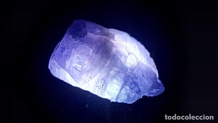 Coleccionismo de minerales: TANZANITA EN BRUTO ESPÉCIMEN #001 - 27,50 CTS - Foto 2 - 203378355