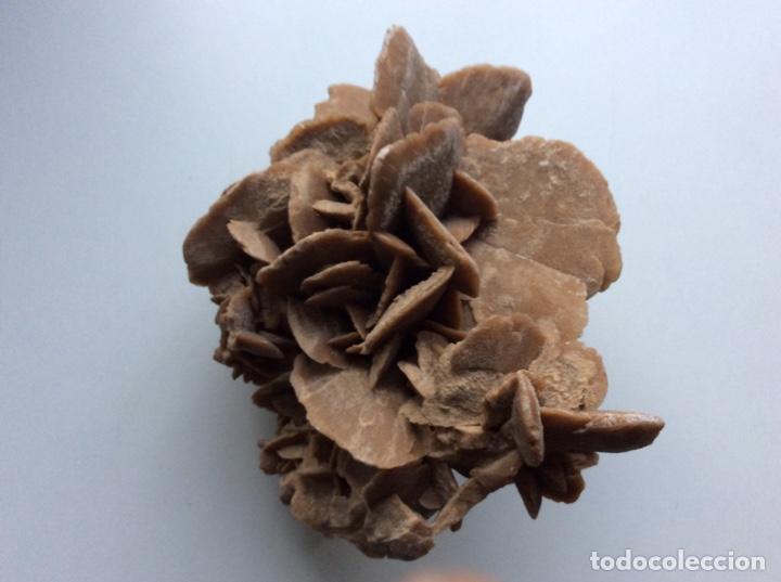 Coleccionismo de minerales: Envío 8€. Rosa del desierto de 20x15x10cm Es pieza muy rara por su composición y procede de Tunez - Foto 2 - 215286477