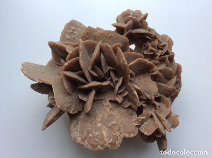 Coleccionismo de minerales: Envío 8€. Rosa del desierto de 20x15x10cm Es pieza muy rara por su composición y procede de Tunez - Foto 3 - 215286477