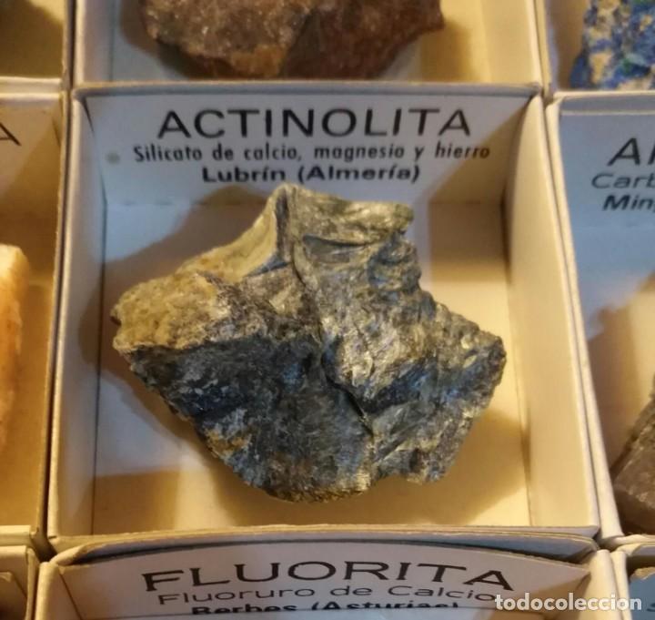 Coleccionismo de minerales: Colección CRIP KADET 1 de 12 minerales, limonita, galena, siderita, azurita, magnetita, ... - Foto 7 - 226133230
