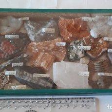 Coleccionismo de minerales: MINERALES Y FÓSILES DE TÚNEZ. HEMATITE, AGATA, AMATISTA, TRILOBITE, AMONITA. Lote 235375450