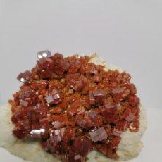 Coleccionismo de minerales: VANADINITA. Lote 240232850