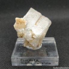 Coleccionismo de minerales: FLUORITA - MINERAL. GUALBA-BARCELONA. Lote 256151280