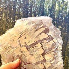 Coleccionismo de minerales: CUARZO ELESTIAL YACARÉ QUARTZ. Lote 277426573