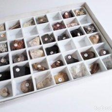 Coleccionismo de minerales: COLECCIÓN DE MINERALES, ROCAS Y FÓSILES. Lote 286761573