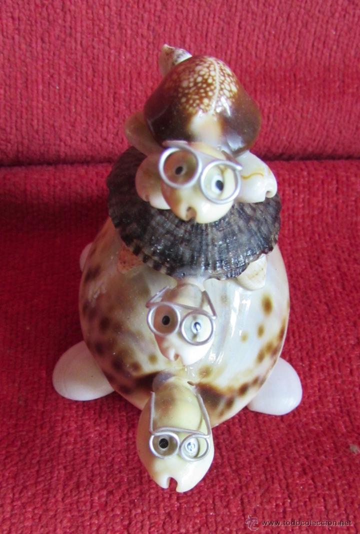 Coleccionismo de moluscos: BONITAS FIGURAS DE CONCHAS - Foto 3 - 45928529