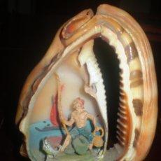 Coleccionismo de moluscos: CARACOLA CON PESCADOR DENTRO. Lote 48500929